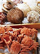 西武池袋本店「初夏の北海道うまいもの会」−浜ゆで毛ガニ、活ホタテなど海産物多彩に