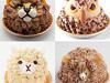 動物ケーキ8種